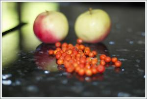 rognebær og epler1