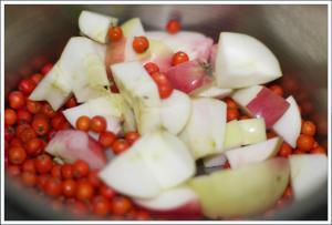 rognebær og epler2