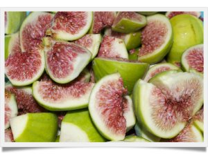 figs 5-framed